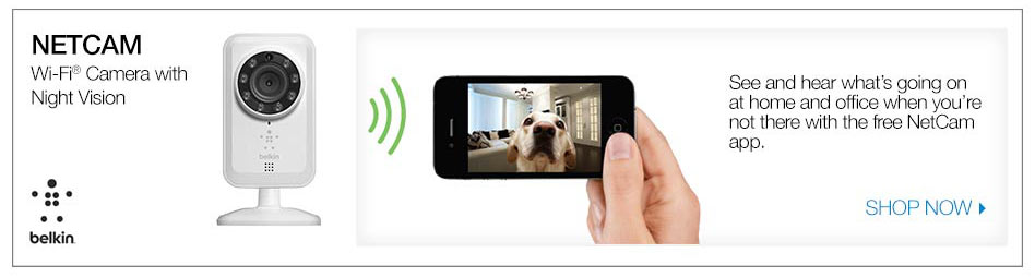 netcam with wifi camera with night vision