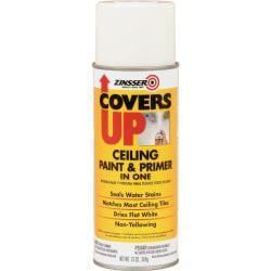Zinsser COVERS UP Ceiling Paint Primer In One Stain Blocker Spray, 13 Oz, White