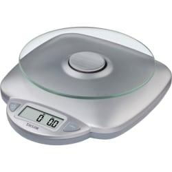 Taylor Digital Food Scale, 8in. x 9.4in. x 2.8in., Silver
