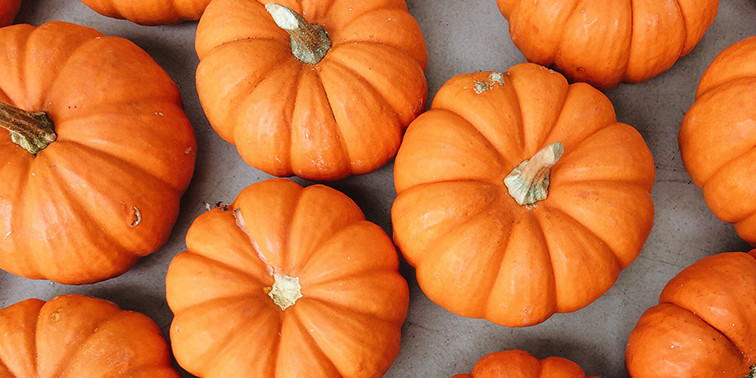 Festive Fall Party Ideas for the Workplace