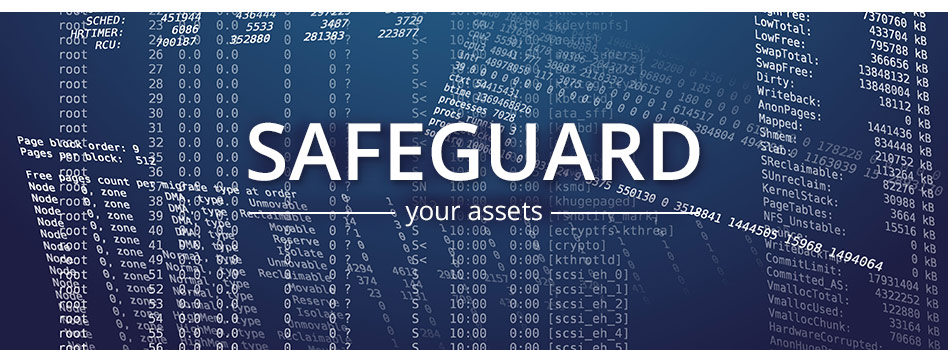 Safeguard Your Assets