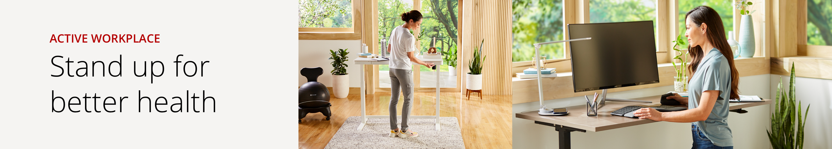 active workplace woman at standing desk and man sitting